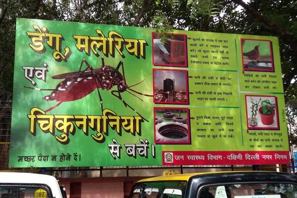 moquito.jpg